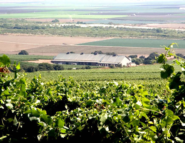 Vinícolas - Talbott Vineyards
