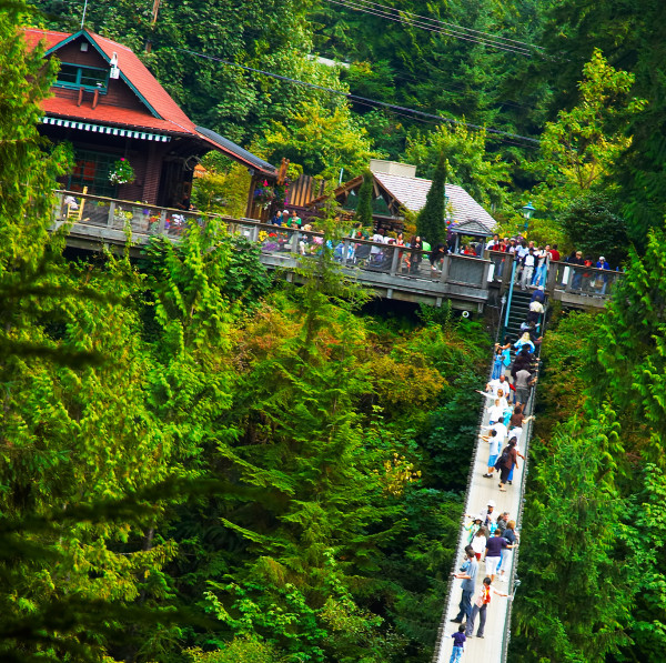 1. Passeios - Capilano Supension Bridge
